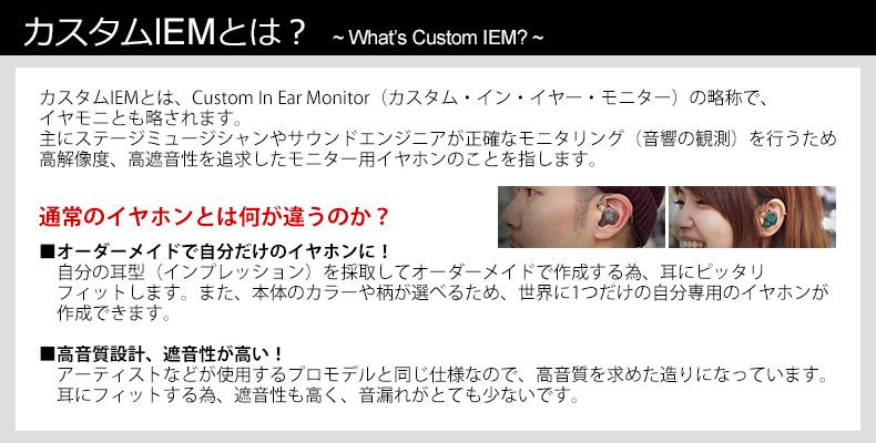 custom_1