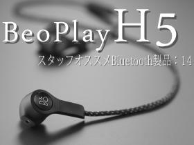 H5 1_s