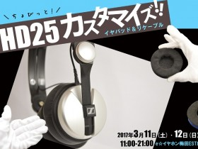 【WIP】HD25カスタマイズ17031112