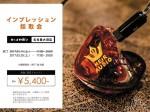 インプレ採取会_20170325_名古屋Blog-min